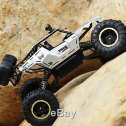 4WD RC Monster Truck Off-Road Vehicle 2.4G Remote Control Crawler Car XYCQ